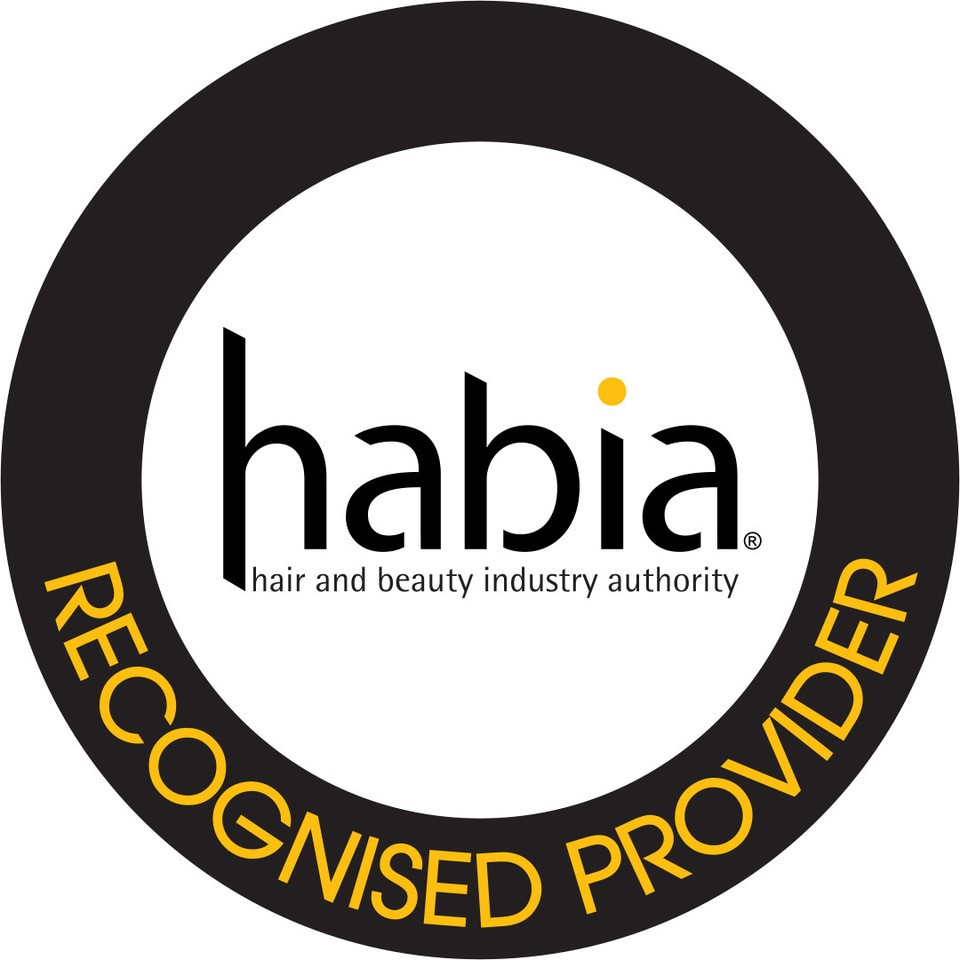 Habia endorsed bridal hair training course and hairstyle tutorials Rich results on Google's SERP when searching for Braids Bridal hairstyle & hair up course online